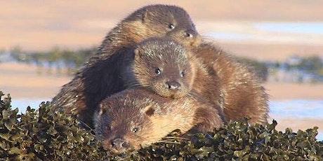 Otter Tracks Talk tickets