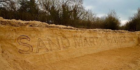 Sandcastles for sand martins entradas