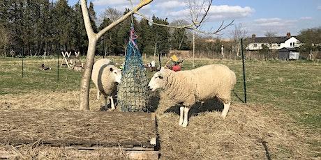 Saturdays Drop-In Sessions at Oxford City Farm tickets