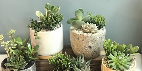 the flower shed's Succulent Planting Workshop @ Common Grounds Café tickets
