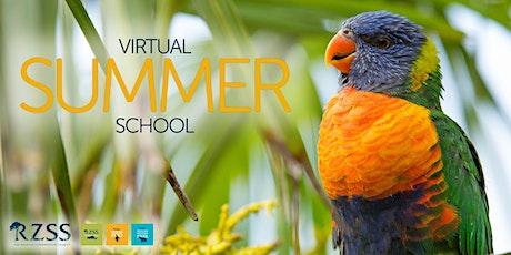 Virtual Summer School 2021 tickets