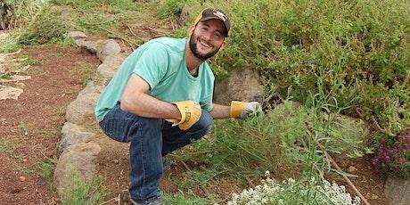 JLM: Garden renovation for at-risk teen - הקמת גינה  לנוער בסיכון tickets
