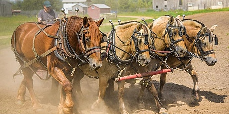 Plow Day 2021 (Tour Group 2) tickets