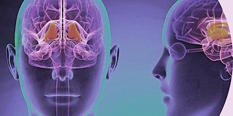 Understanding Neurotransmitters in Teamwork Tickets
