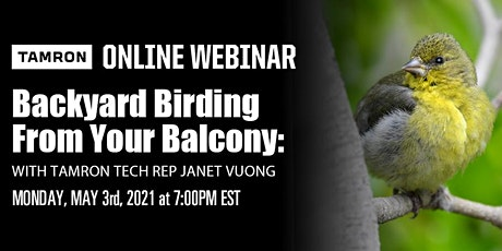BACKYARD BIRDING FROM YOUR BALCONY WITH JANET VUONG tickets