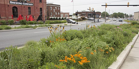 Successful Plants & Plant Strategies for Cities and Green Infrastructure tickets