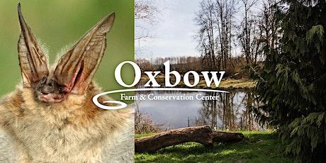 International Bat Appreciation Day Party at Oxbow tickets