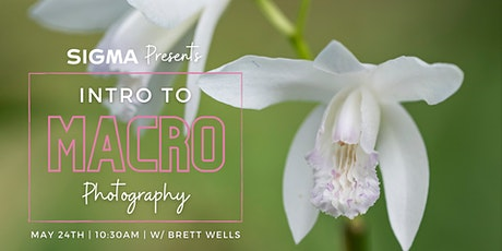 Sigma Presents An Intro to Macro Photography with Brett Wells tickets