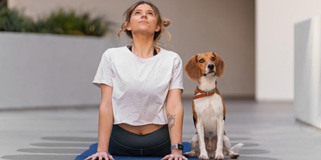 DOGA: Yoga With Your Dog tickets