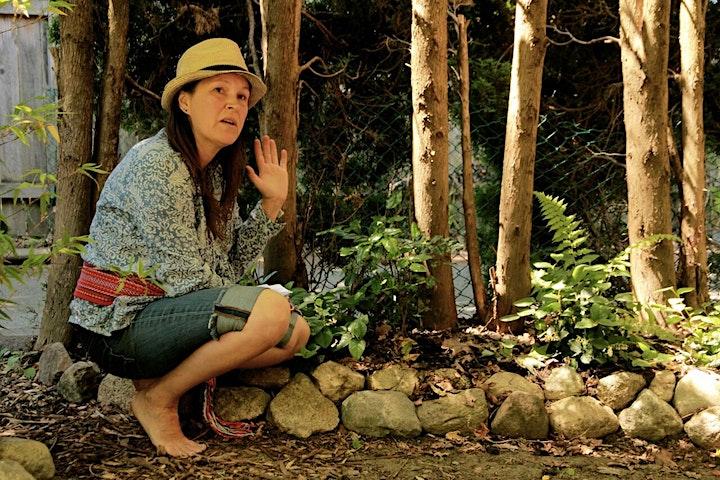 Indigenous Knowledge Keeper & Herbalist Plant Walk image