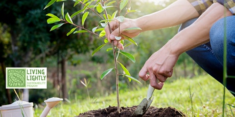 Community Tree Planting Workshop ~ Coramba tickets