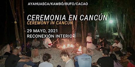 Ceremonia en Cancún con Ayahuasca/Kambó/Bufo/Cacao tickets