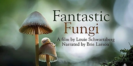 May Movie Month: Fantastic Fungi  introduced by Pam O'Sullivan tickets