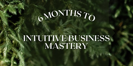 6 Months to Intuitive Business Mastery Program tickets
