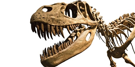 After school: Construct a Dino Palaeontology Workshop tickets
