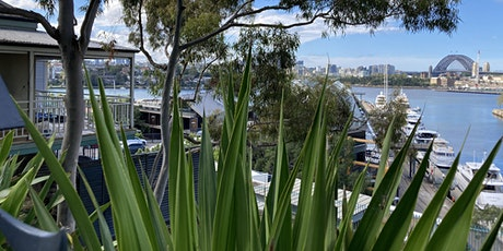 Pyrmont - Architectural Time Capsule Walk tickets