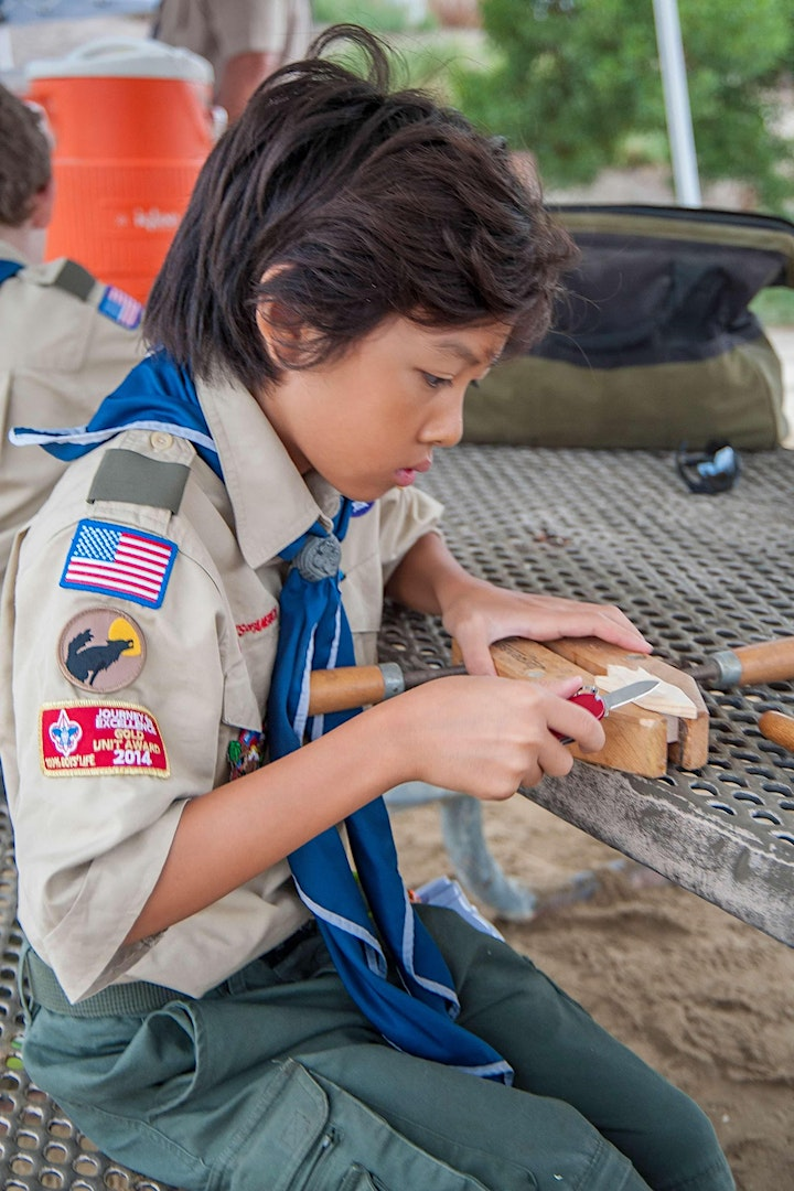 Merit Badge Workshop and Trail to First Class Day image