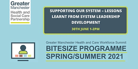 Supporting our System – lessons learnt from system leadership development tickets