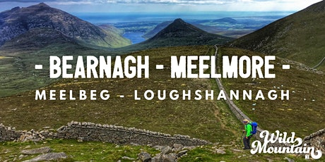 Bearnagh, Meelmore, Meelbeg, Slieve Loughshannagh alongside the Mourne Wall tickets