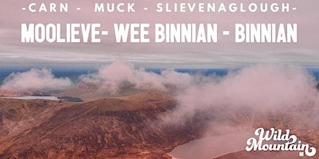 Carn,Muck,Slievenaglogh,Moolieve,Wee Binnian, Binnian alongside Mourne Wall tickets