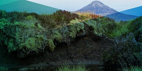 Optimising Water Quality Returns from Peatland Management tickets