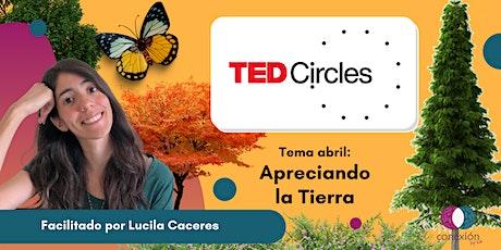Círculos TED - Apreciando la Tierra entradas