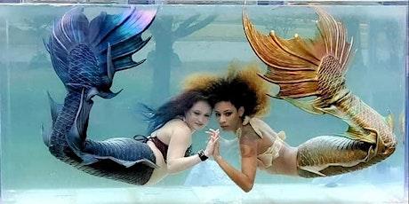 Mermaid Tank Rentals - Chantilly, VA tickets