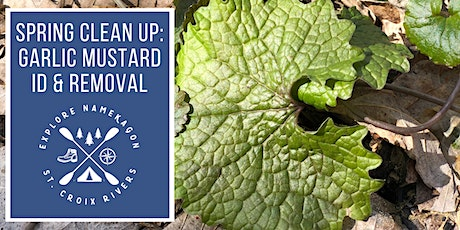 Spring Clean Up: Garlic Mustard ID & Removal tickets