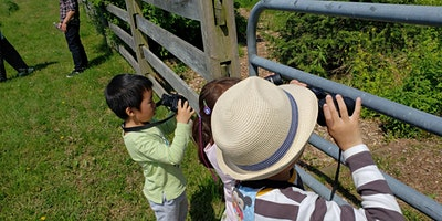 Beginning Birding for Families