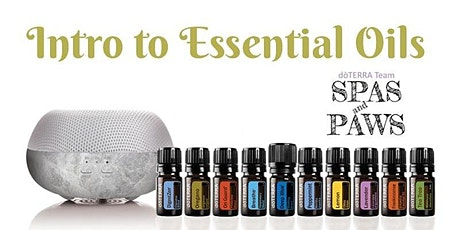 INTRO CLASS:  Natural Solutions with the top 10 Essential Oils (doTERRA) tickets