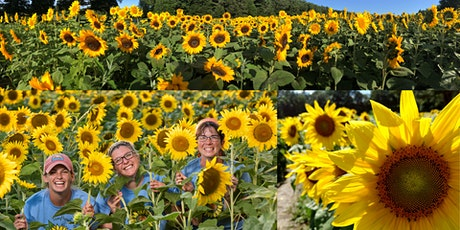 2021 Sunflower Festival - Making NH Wishes Blossom (Mon-Fri) tickets