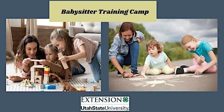 4-H Babysitter Training Camp tickets