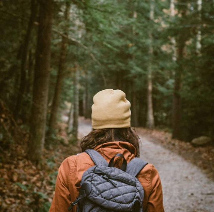 Winter Workshop: Mindful Self-Care in the Forest image