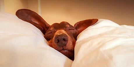 Secrets to Successful Sleep Workshop tickets