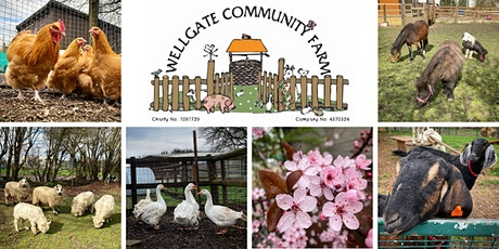 Visit Wellgate Community Farm tickets
