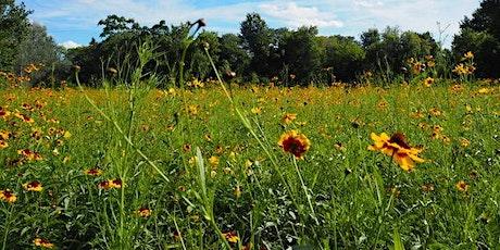 Callahan Park Volunteer Earth Week Spring Clean Up tickets