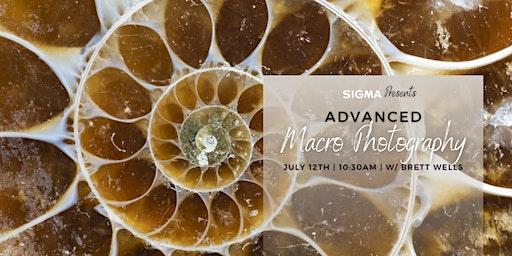 Sigma Presents - Advanced Macro Photography with Brett Wells!