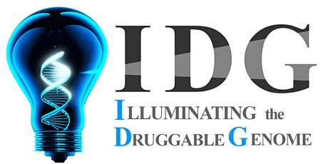 IDG e-Symposium Series - April 20, 2021 tickets