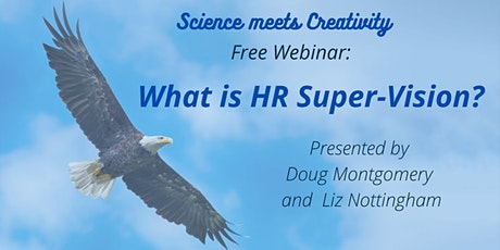 What is HR Super-Vision?   Free Taster  Session tickets