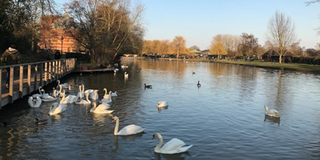 Pilgrimaging with the Sweet Swan of Avon tickets
