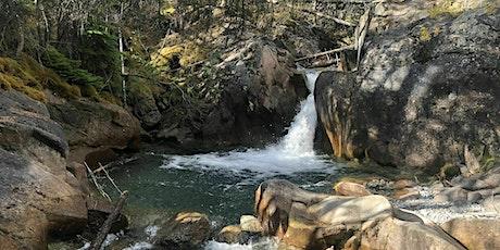 Chasing waterfalls  Thompson Creek falls (Nordegg area) tickets