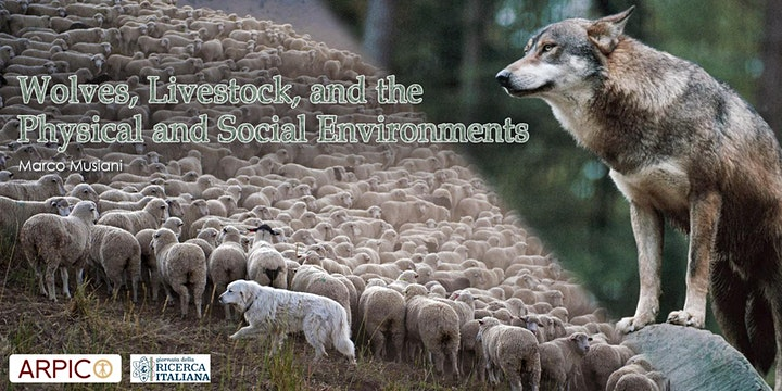 Wolves, Livestock, and the Physical and Social Environments image