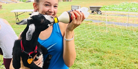 Goat Yoga at Lucky Dog Farm - Wentzville, MO tickets