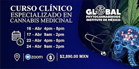 CURSO CLINICO ESPECIALIZADO DE CANNABIS MEDICINAL entradas