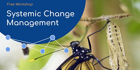 Systemic Approach for Managing Organizational Change tickets