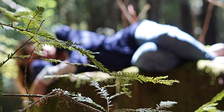 Forest Bathing at Belair tickets