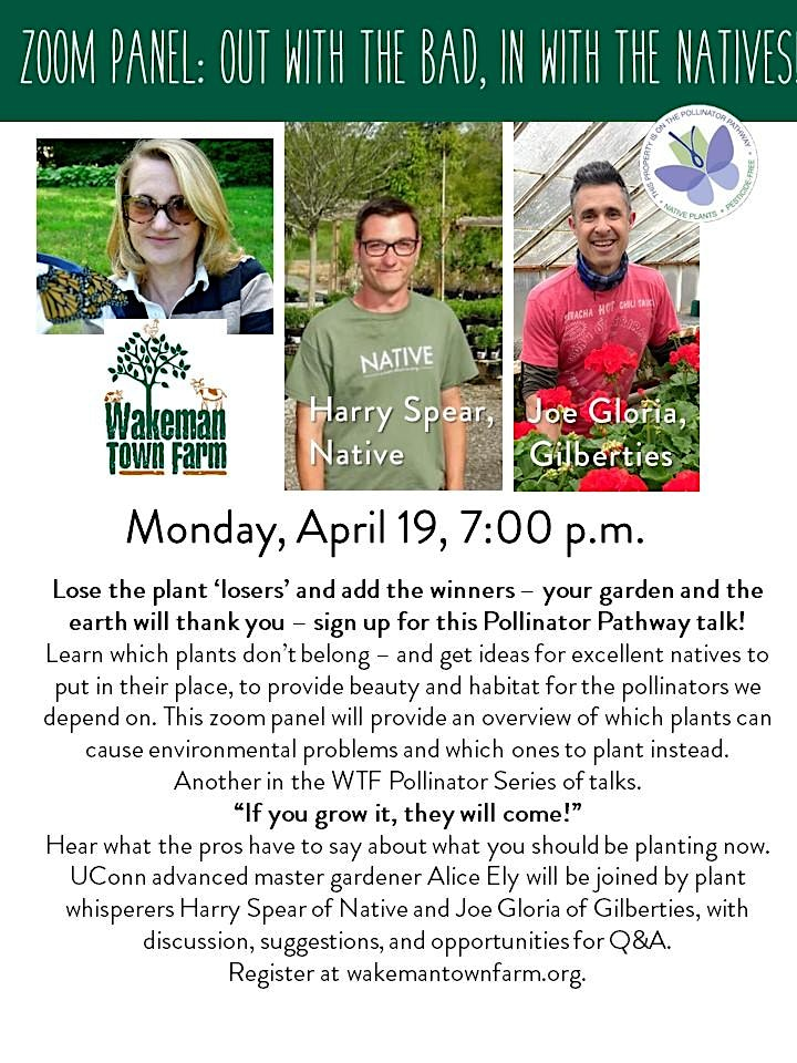 Out with the Bad: In with the Natives, A Pollinator Series Talk - Zoom image