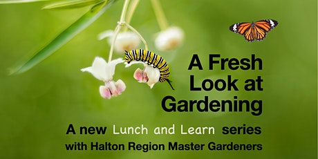 Lunch & Learn for Gardeners: A FRESH LOOK AT GARDENING tickets