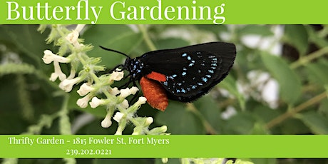 Butterfly Gardening Basics tickets