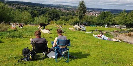 Alpaca Life Drawing - Springs Lane Farm - Alfreton tickets